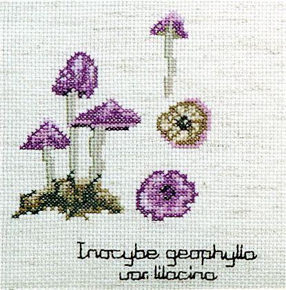 Inocybe geophylla mushroom cross stitch kit complete