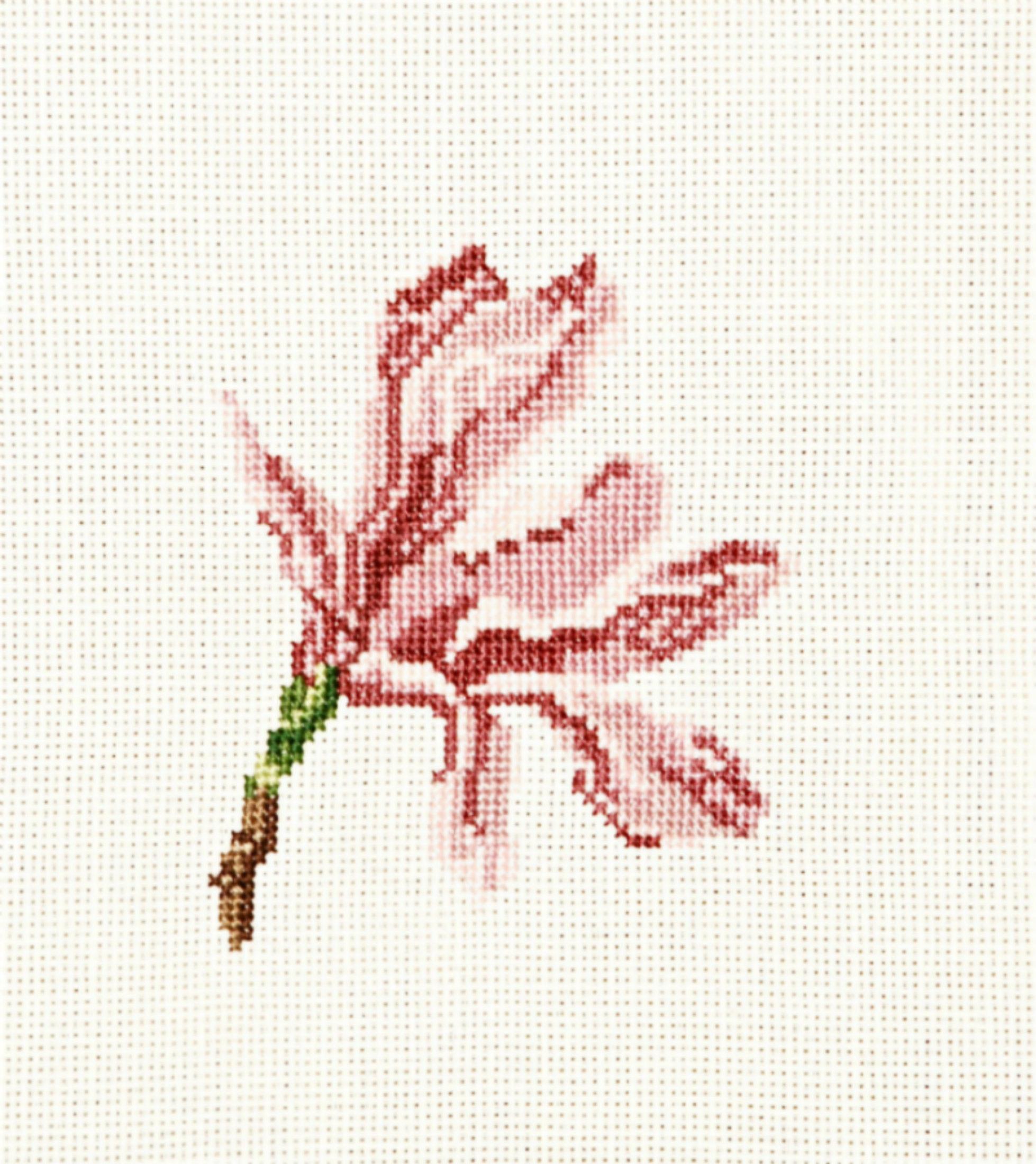 Magnolia flower head cross stitch kit completed